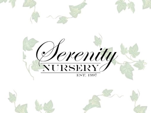 Serenity Nursery