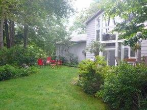 Liz's backyard