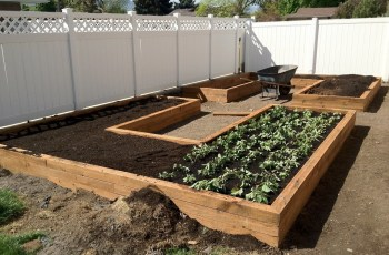 How To Build Garden Boxes - Step By Step Instructions - The Recipe with regard to Build Backyard Garden Box