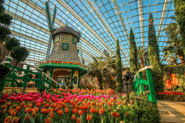 Singapore's Largest Tulip Festival, Tulipmania, Returns To Gardens with Flower Festival Garden By The Bay