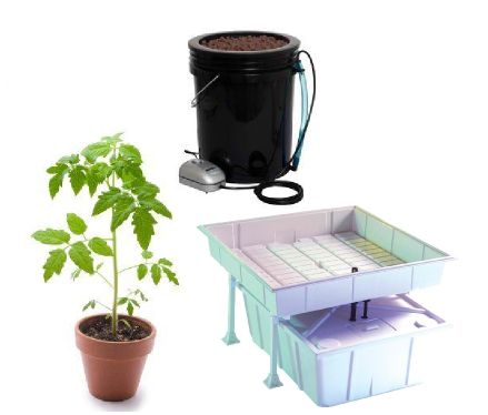 What's the Best Indoor Gardening Method?