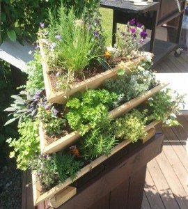 Natural Wood Vertical Garden