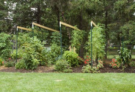 Straw Baled Gardening