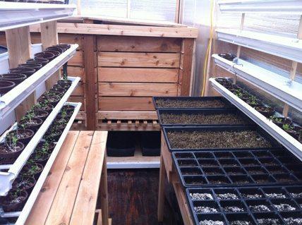 Highly Sustainable Urban Aquaponics Farm