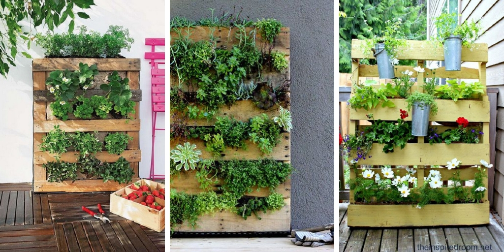 Beautiful DIY Vertical Pallet Garden Ideas That Will Save