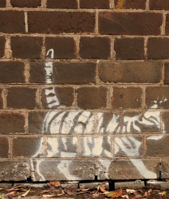 Acceptable graffiti? Stencilled cat in Sydney's inner west