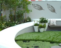 The cream, pale yellow and blue-greens in the plants look fabulous with the white deck