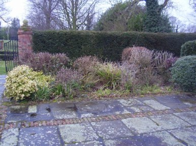 GardenDrum BFeistel 1 - the mixed border end march 2011