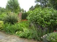 GardenDrum BFeistel 3 - early summer 2011