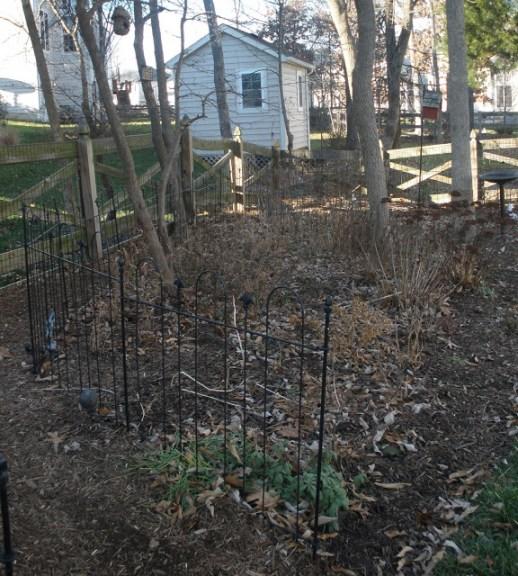 Tammy Schmitt Casa Mariposa - invertebrate garden - shed