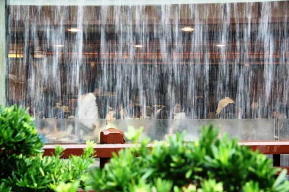Restaurant disguised behind the water cascade