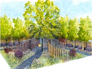 SeeAbility garden Chelsea Flower Show 2013