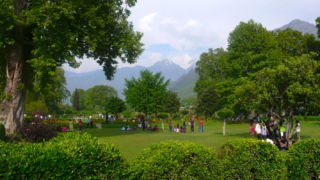 The fine plane trees and mountain views at Shalimar Bagh.