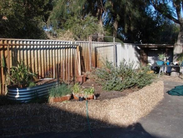 Straw bale garden beds