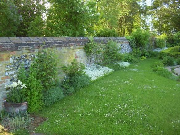 Woodruff period in herb garden postcard