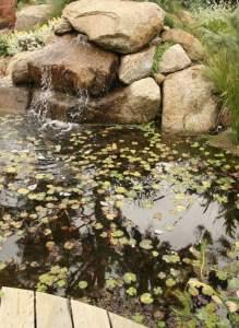Frog pond Design Phillip Johnson