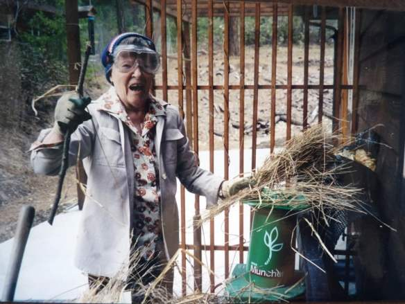 Grandma, aged 94, shredding for the compost