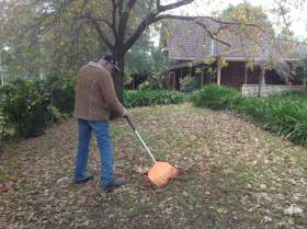 Jim raking - all our tools have to be cleaned