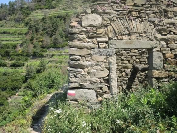 37 Cinque Terre Italy