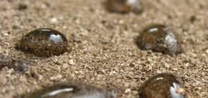 Water-droplets-on-hydrophobic-sandy-soil