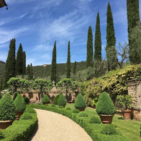 Trees: punctuation with pines at Villa Cetinale