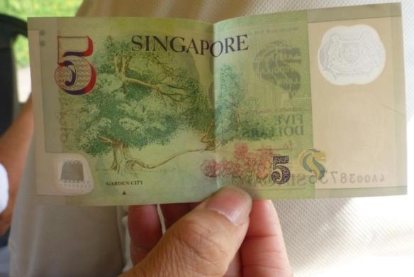 A tree known to every Singapore five-dollar note user!