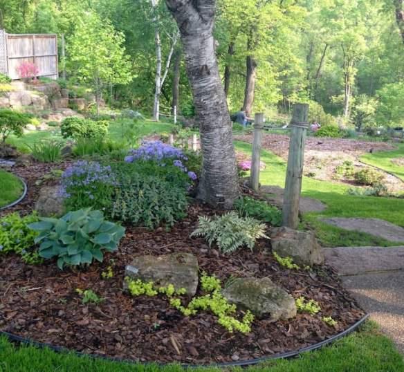 Betty Ann's garden