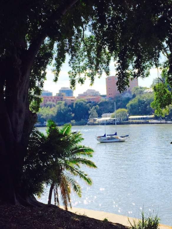 Brisbane River from Brisbane Botanic Gardens Photo Mary Jo Katter