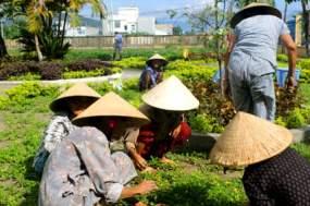 DaNang orphanage Vietnam 7