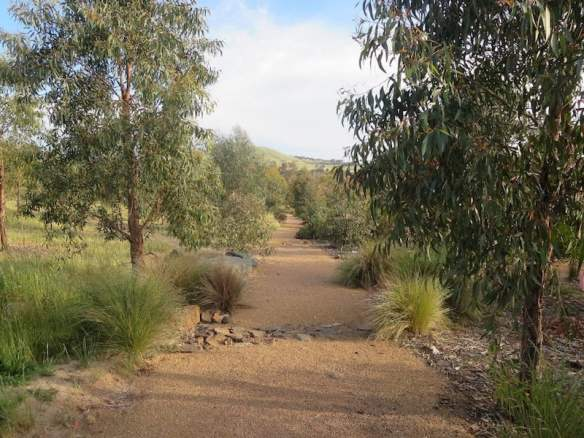 Path through the new Southern Tablelands Ecosystem Park in the National Arboretum, Canberra ACT