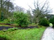Chatsworth Trout Stream with Dan Pearson's plantings Photo Jill Sinclair