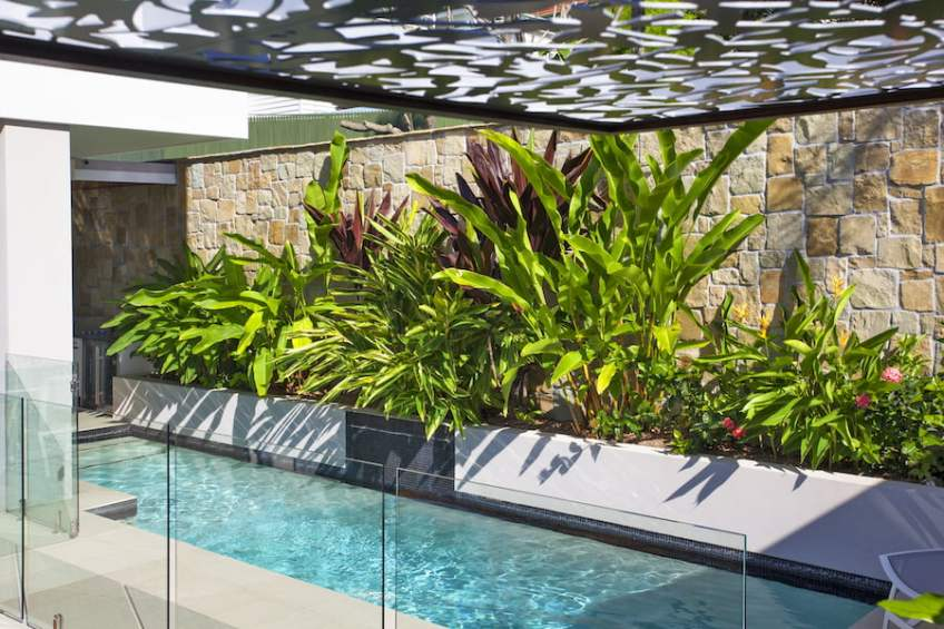 Small garden with narrow pool. Design Utopia Landscape ... on narrow patio designs, small side yard landscaping, small backyard landscaping, a very small yard landscaping, red plants for landscaping,