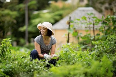 Volunteer gardener at Vaucluse House Sydney