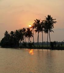 The sunset on the backwaters gets better. Coconuts dominate the landscape and the cuisine of Kerala.