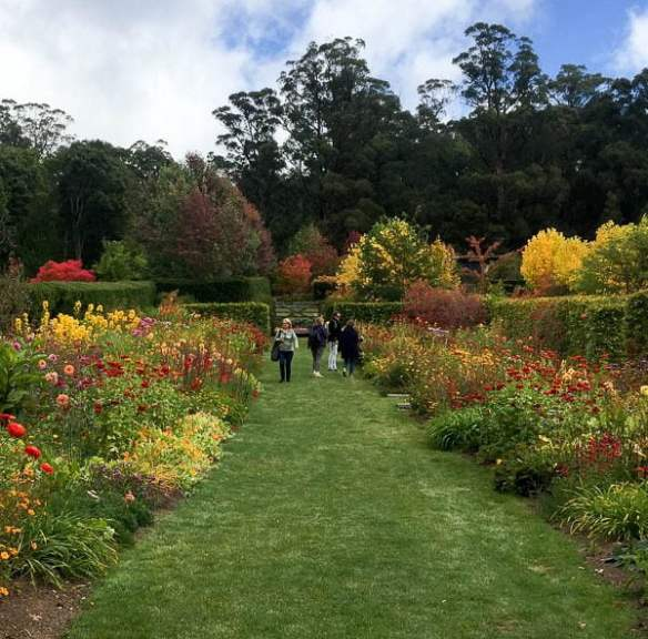 'Frogmore' open garden