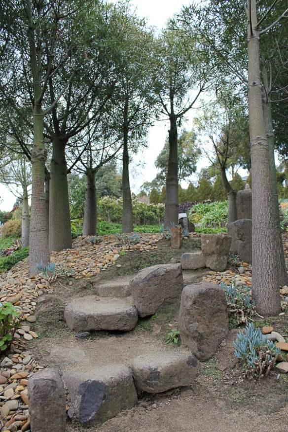 Bottle tree walk in Attila Kapitany's garden