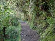 Path to Inca Bridge at Machu Picchu