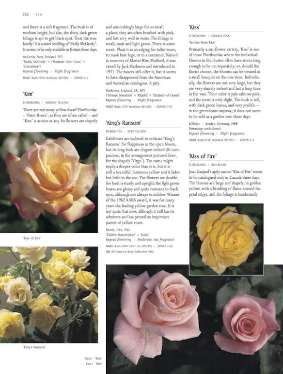 Macoboy's Roses p262