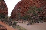 Outback plains