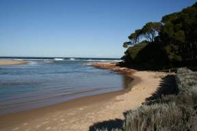 Temperate coast and hinterland