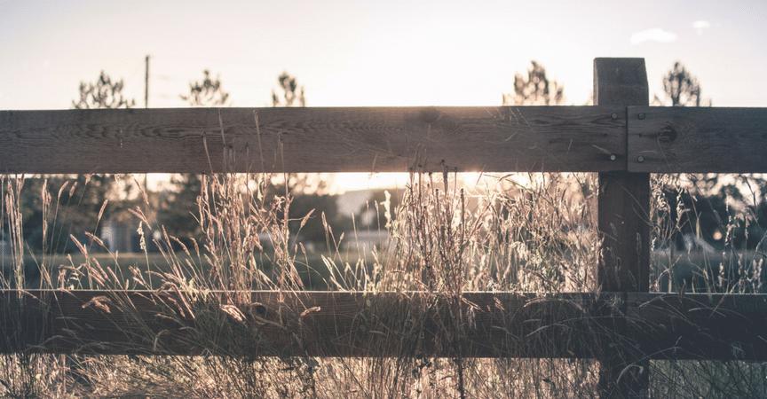separacion-ocultacion-sombreo-gardeneas