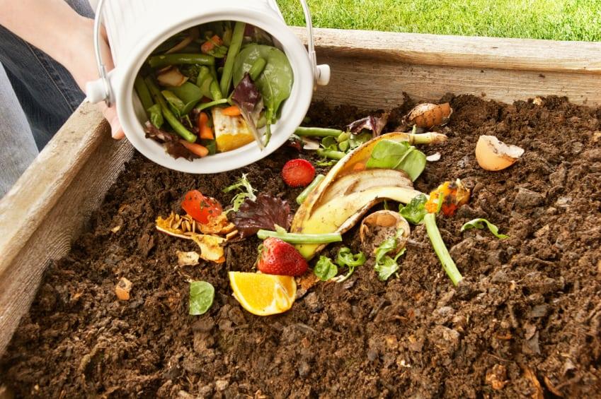 diccionario-jardineria-gardeneas-compost