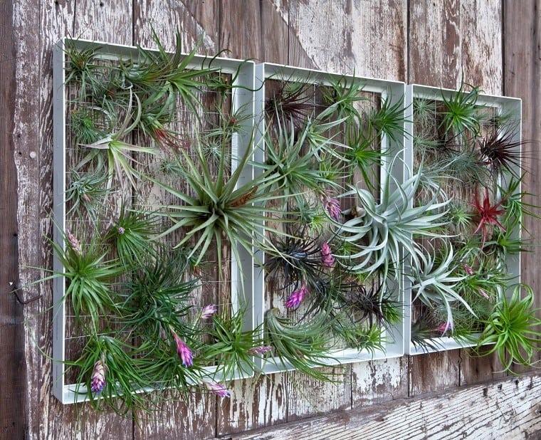 jardin-vertical-gardeneas-temperatura