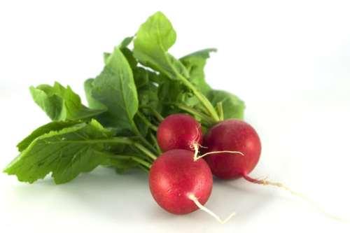 vegetales para plantar en mayo junio rabanitos