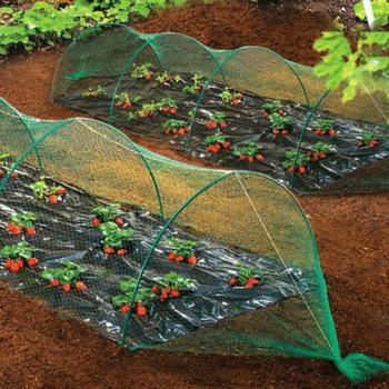 malla-protección-verde-antipájaros-extruida-02