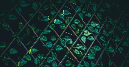 setos-celosías-separación-ocultación-antiUV-intimidad-privacidad-jardín-terraza