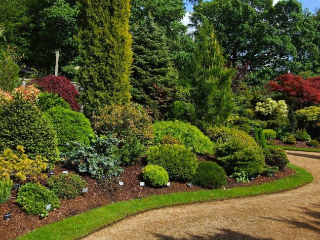Garden well maintained by experts gardeners in Perth