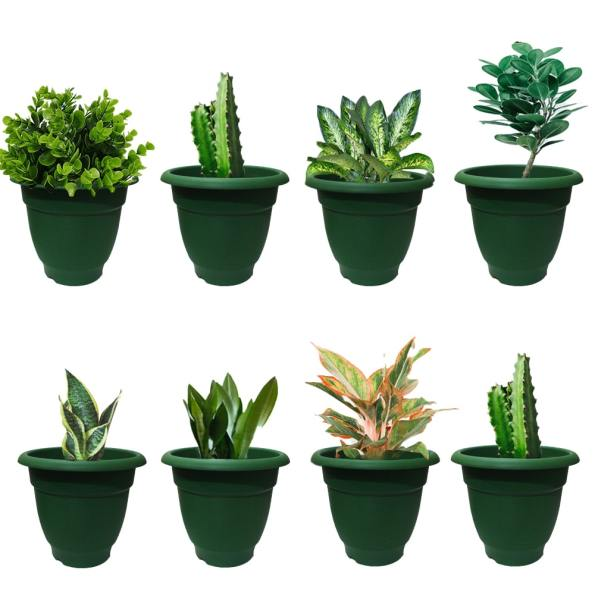 Elegance Green Planter – 8 Inch Set of 8-min