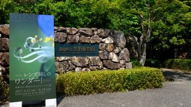 Kochi Japan Botaincal Gardens Tomitaro Makino travel (205)
