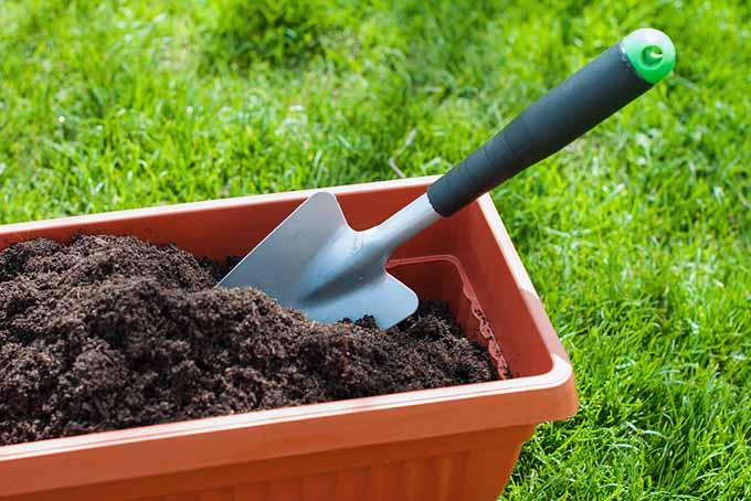 Spade in Container with Soil | GardenersPath.com